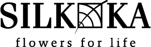 Logo Silk-ka - Rottumhuys Caribbean - Curaçao
